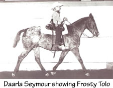 foundation_appaloosa_mare_frosty_tolo_darla_text